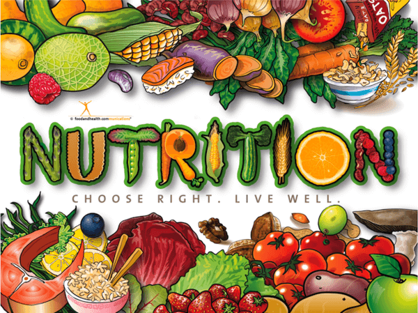 March Is National Nutrition Month Avenue 360